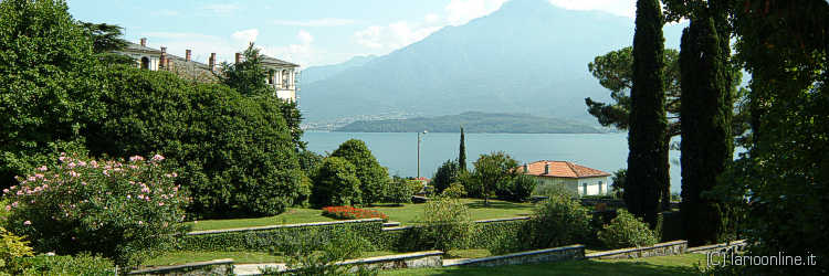 The climate and the flora lake Como